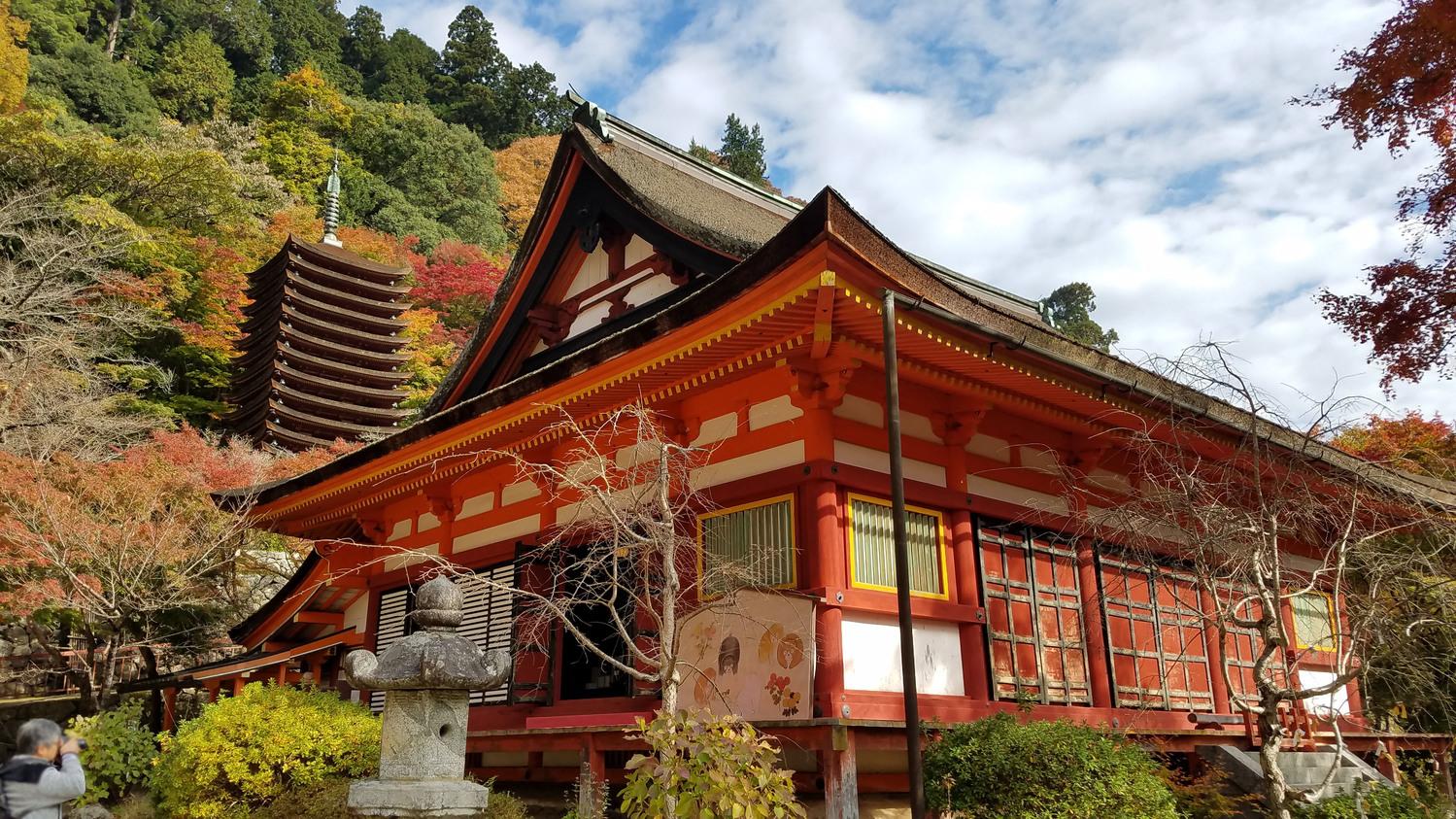 奈良県でおすすめしたい5つの紅葉めぐりスポット