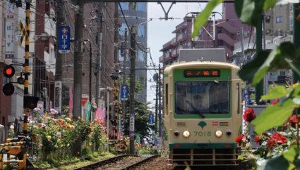 東京の下町を半日で観光できちゃう!都電でゆる~く「ぶらり旅」しよう♪