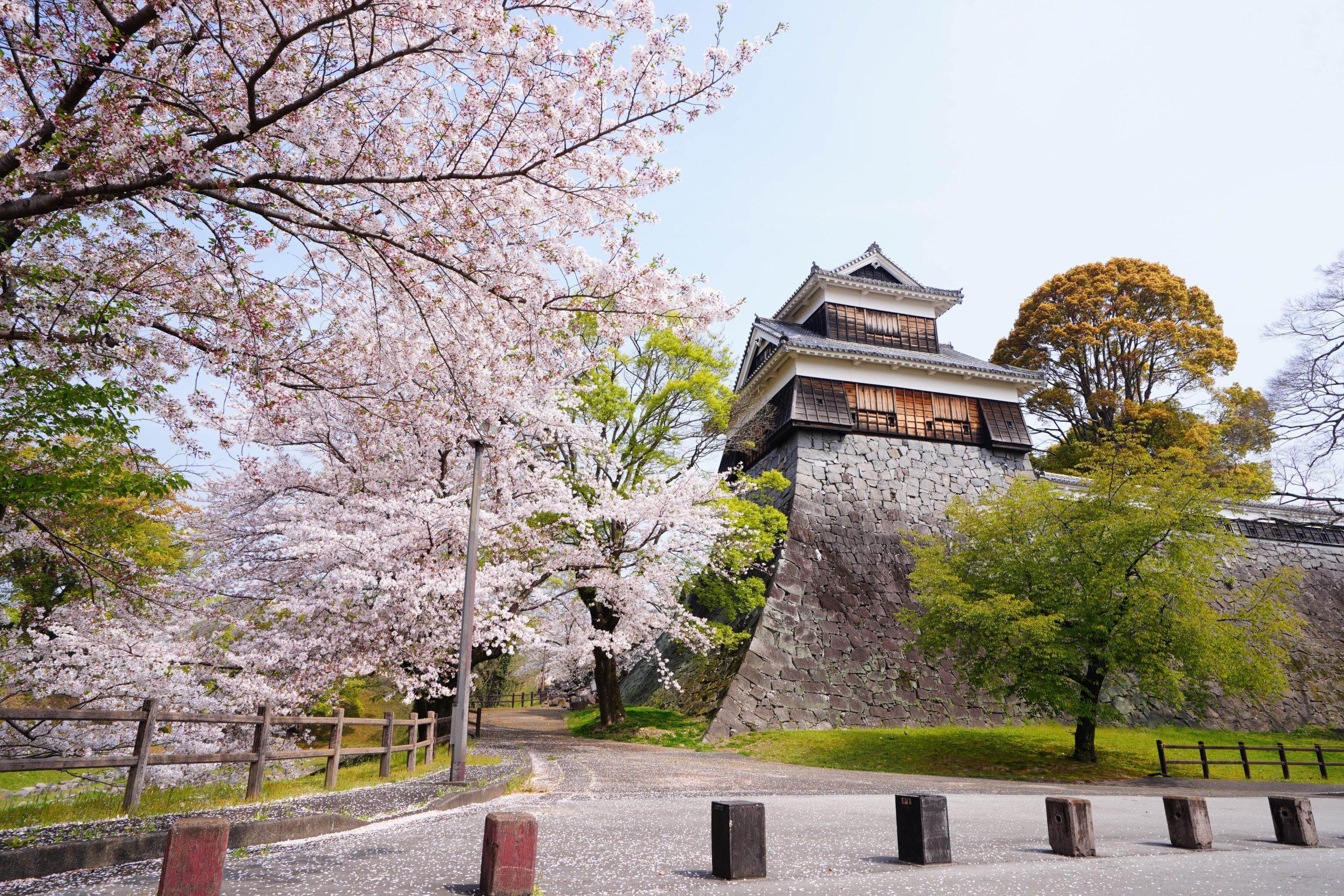 これぞ定番な「熊本」のオススメ観光スポット5選