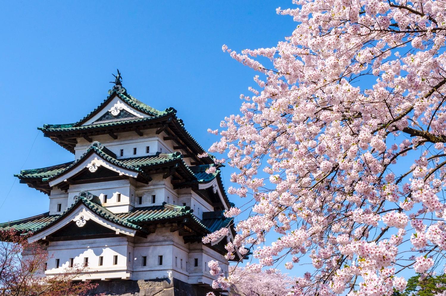 日本に現存する12の天守閣。現存する貴重なスポットを訪れよう