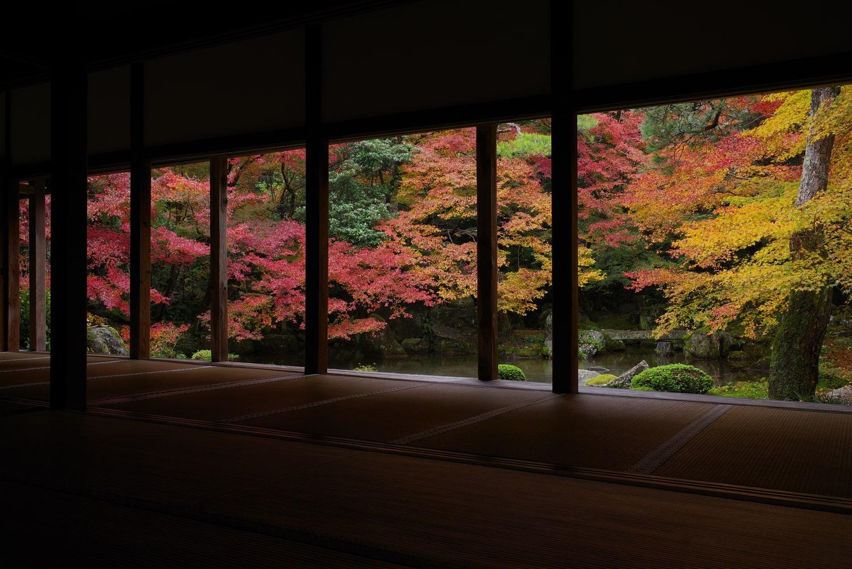 京都観光で訪れたい庭園まとめ。バリアフリー観光情報付き。