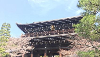 京都観光 > 京都市・祇園・嵐山観光 > 心清められる法然上人の教え…知恩院で人生の迷いを晴らす